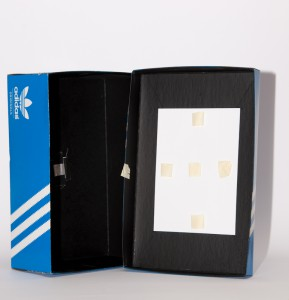 Shoebox pinhole camera inside